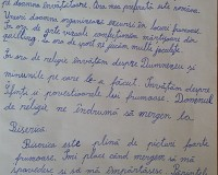 Lucrare literara - Raluca Cot